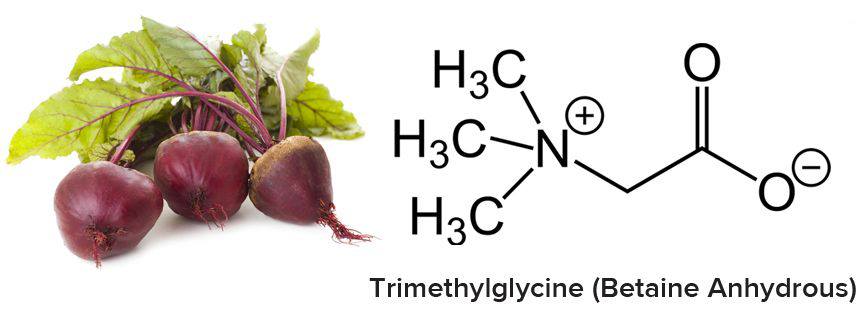 Tri Methyl Glycine